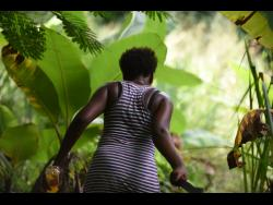 This woman cuts her way through the bush as residents went all out to find Winshae.